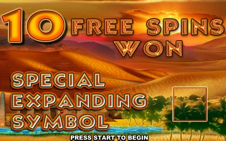 Get the Free Spins and Win Big